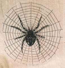 1回使用 スパイダークモの巣とクモ中古スタンプウッドマウント