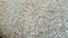 コシヒカリ 30kg  中米