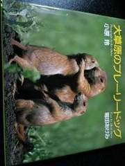 絶版【大草原のプレーリードッグ】写真集