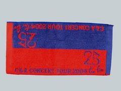 ���yCHAGE&ASKA�zCONCERT TOUR 2004 two five �~�j�n���h�^�I��