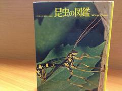 学習百科図鑑☆昆虫の図鑑☆