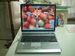 �����g���� FMVNB50R XP 15�^ DVD�}���` ���� ��L����