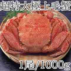 特大毛蟹1尾で1kgの希少サイズ