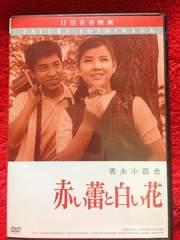 赤い蕾と白い花 DVD 吉永小百合 日活