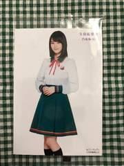 非売品 乃木坂 生田絵梨花 セブンイレブンフェア2016 生写真