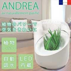 【送料無料】NASA研究開発 アンドレア 空気清浄機◆植物空気清浄器