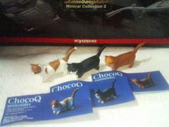 チョコQ  アニマルテイルズ3  マンチカン  白赤  白黒  赤トラ 3種