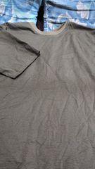 3Lサイズ 抹茶色のボーダーTシャツ