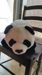 祝!パンダの赤ちゃん誕生!リアルパンダぬいぐるみ