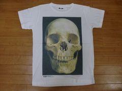 ガイコツ 標本 フォト Tシャツ Mサイズ 新品