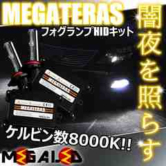 mLED】レクサスLS460L前期中期/フォグランプHIDキット/HB4/8000K