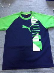 プーマ150センチTシャツ
