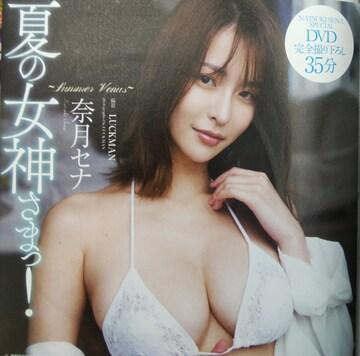 夏の女神さまっ! DVD 35分収録 新品 未開封品 未使用品 未使用