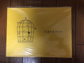 NEWS テゴマス 増田貴久 主演舞台 灰色のカナリア パンフレット
