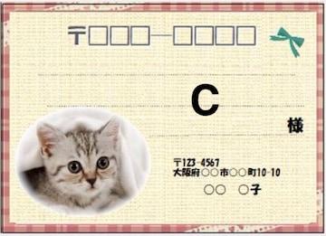 ■猫C(宛名シール)8枚■