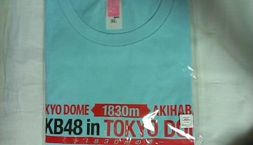 「AKB48 in TOKYO DOME 〜1830mの夢〜」Tシャツ チームB XL