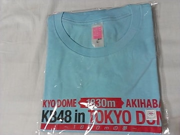 「AKB48 in TOKYO DOME 〜1830mの夢〜」Tシャツ チームB L