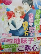 エタニティブックス桜木小鳥完璧彼氏と完璧な恋の進め方
