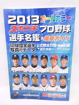 1402 スポニチプロ野球選手名鑑 2013
