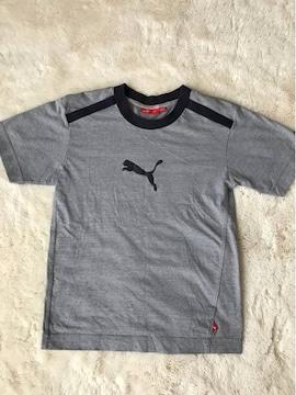 子供用プーマ  半袖Tシャツ  140センチ