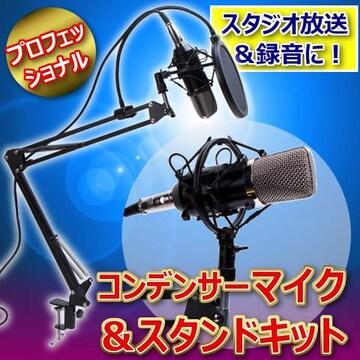 プロフェッショナルスタジオ放送&録音コンデンサーマイク