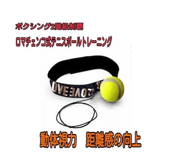 ロマチェンコ式トレーニング ボクシング テニスボール