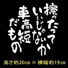 【車高短だもの】カッティングステッカー☆白☆