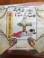 リーメントぷちサンプル うちの自慢のにゃんこ/�G
