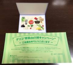 野菜de川柳キャンペーンQUOカード500円分/未使用/当選品