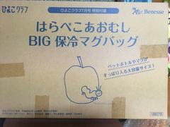 ☆非売品☆はらぺこあおむし☆BIGマグバッグ☆
