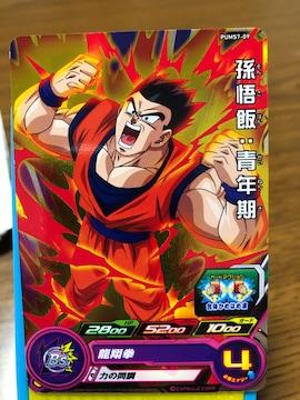 スーパードラゴンボールヒーローズ P 孫悟飯:青年期  PUMS-9