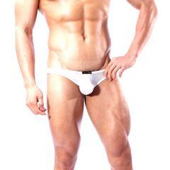 在庫処分価格【送料無料】メンズ セクシー 透け ショーツ パンツ