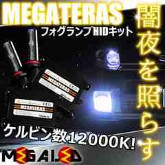mLED】レクサスRX450h前期後期/フォグランプHIDキット/H11/12000K
