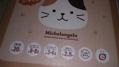 蓄熱式 エコ湯タンポ 猫さん
