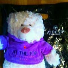 新品 ドバイ  世界一 テディベア 熊 くま クマ ぬいぐる