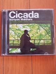 槇原敬之Cicada¥200スタ