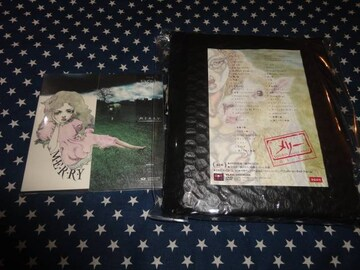 メリー『M.E.R.R.Y.』+『TOUR 09~』初回盤2枚セット美品 DVD付き