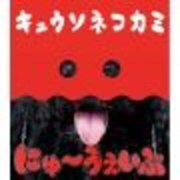 即決 キュウソネコカミ にゅ〜うぇいぶ 初回限定盤 新品未開封