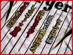 阪神 刺繍 ワッペン 赤星 HM 応援歌 ユニフォームに