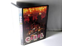 【安!】入手困難DVD. CAROL・キャロル解散コンサート・矢沢永吉