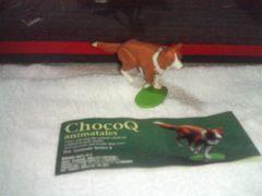 チョコQ   アニマルテイルズ4      ボーダーコリー  赤白
