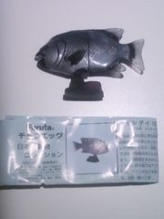 ◆イシダイ♂(チョコエッグ)◆日本の動物コレクション/フルタ/海洋堂