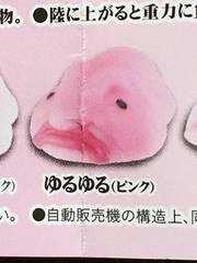 ブロブフィッシュ★ゆるゆるピンク★新品 ガチャ 深海 スクイーズ
