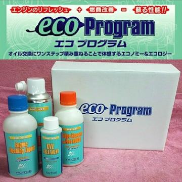 【送料無料】NUTEC エコプログラム セット