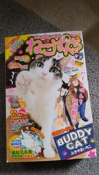 ☆ねこぱんち 桜猫号